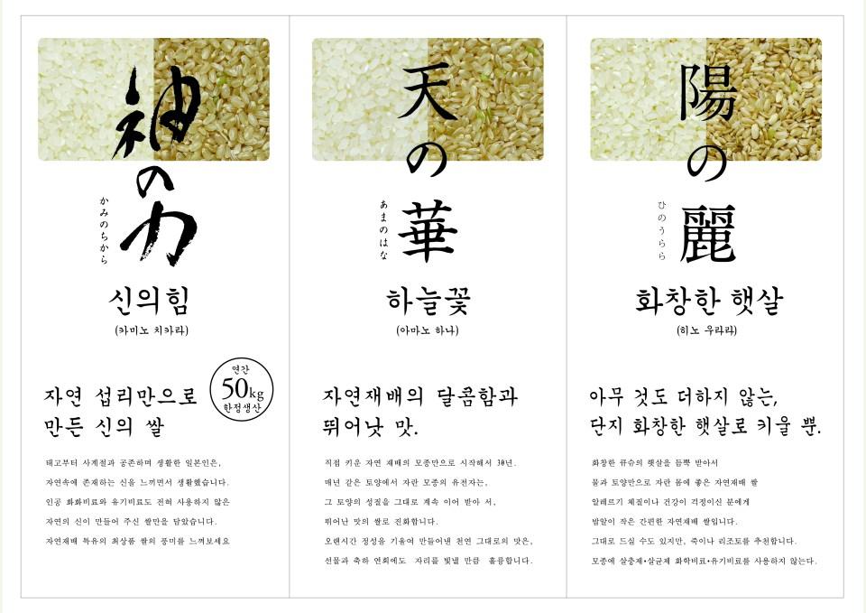韓国語チラシ裏