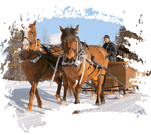 SLEIGH OR <br>A CARRIAGE RIDE