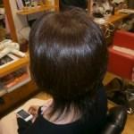 毎日美容室でシャンプーブローをしている方の髪の毛