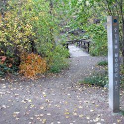 Peterson Creek Park 14