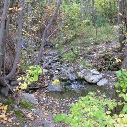 Peterson Creek Park 20
