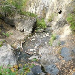 Peterson Creek Park 5