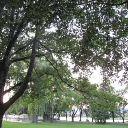 Riverside Park 29