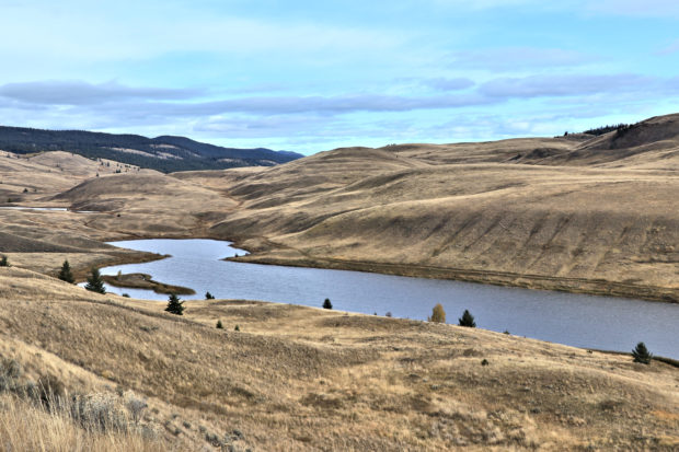 The Grasslands in Fall - Kamloops Trails
