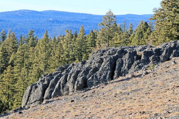 Wheeler Mountain Ramble - Kamloops Trails