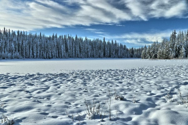 Lodgepole Lake Snowshoeing – Kamloops Trails