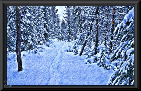 Snowshoeing Ridge Lakes – Kamloops Trails