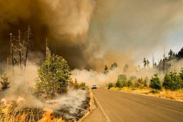 TRU heads collaborative research into wildfires – TRU Newsroom