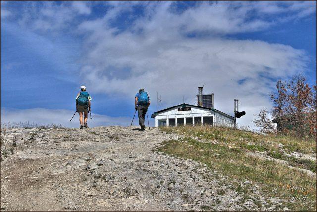 Jesmond Lookout Hike – Kamloops Trails