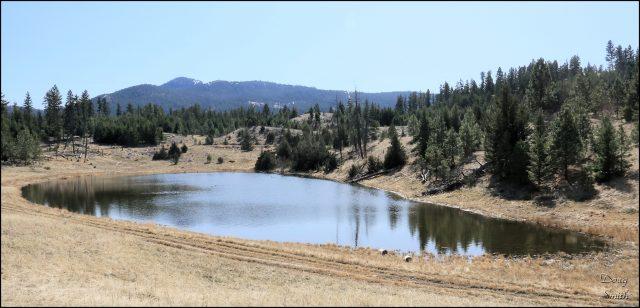 Hiking the Barnes Lake Trails in Barnhartvale
