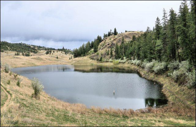 The Deep Lake Extended Loop