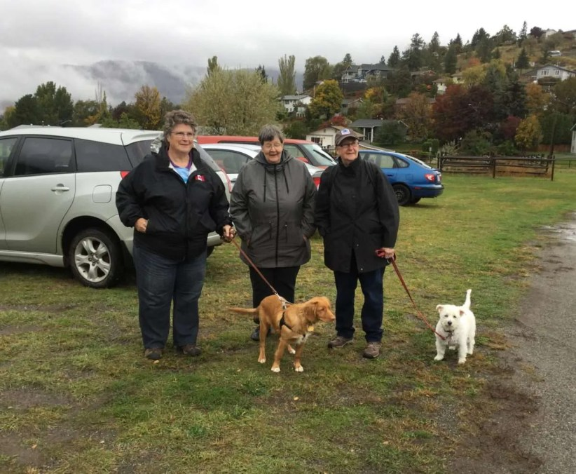 Even the rain could not dampen the spirits of loving pet owners and their animals.