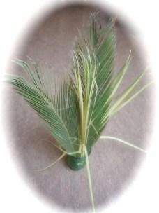 palms_2_2