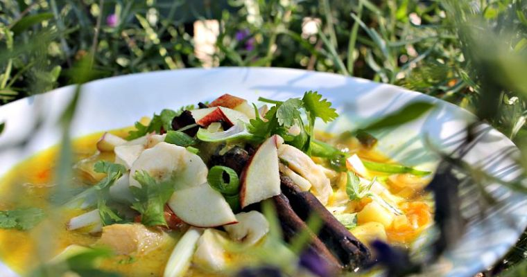 Mulligatawny suppe m/ kylling, kartofler, banan og æbler