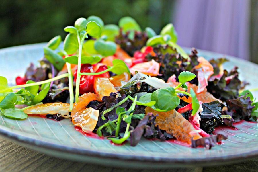Stegt og rå lilla grønkål – med klementiner, løg, brøndkarse