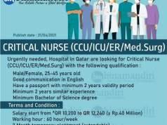 Lowongan Kerja Perawat di Rumah Sakit Qatar