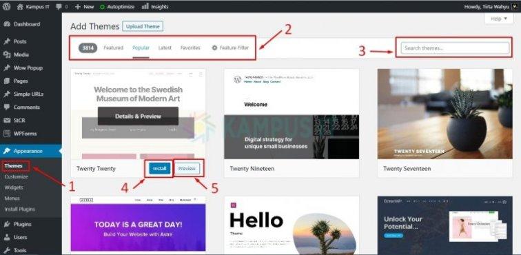 Install WP Themes via Search