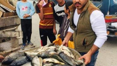 Photo of الرقابة الصحية في قطاع الحر بكربلاء تتلف (200)كغم من الاسماك لعدم صلاحيته للإستهلاك البشري