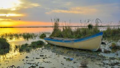 Photo of بالصور: بحيرة الرزازة في كربلاء لازالت تعيش حالة الجفاف.