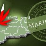 Lékařská marihuana v České republice