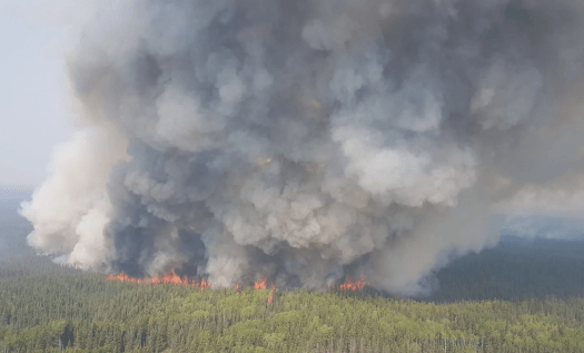 extreme_fire_behaviour_on_the_chuckegg_creek_fire_may-29