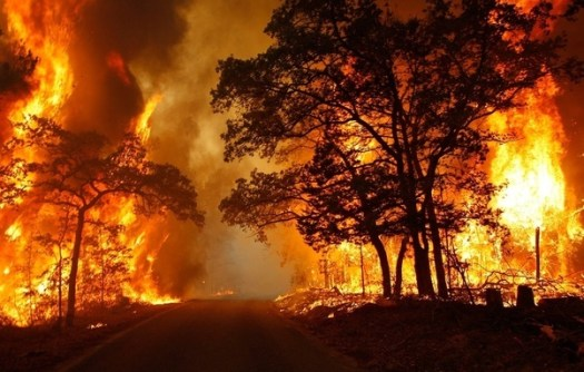 wildfire_california.jpg