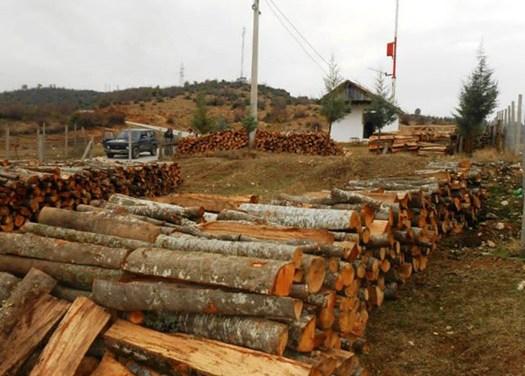 Видео интервју со Кире Михаилов – Ќе нема проблеми со испораката на огревното дрво