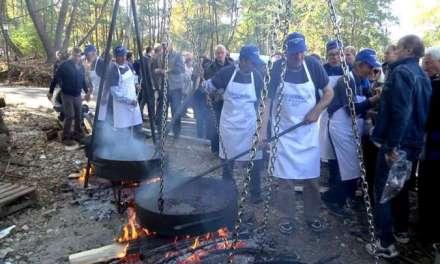 """По 8ми пат се одржа манифестацијата """"Фестивал на смоларскиот костен"""" во Смолари"""