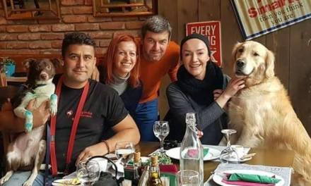 Кучето  влечено со автомобил вдомено кај Стојчевски во Скопје, ќе биде обучувано  да помага на деца со посебни потреби