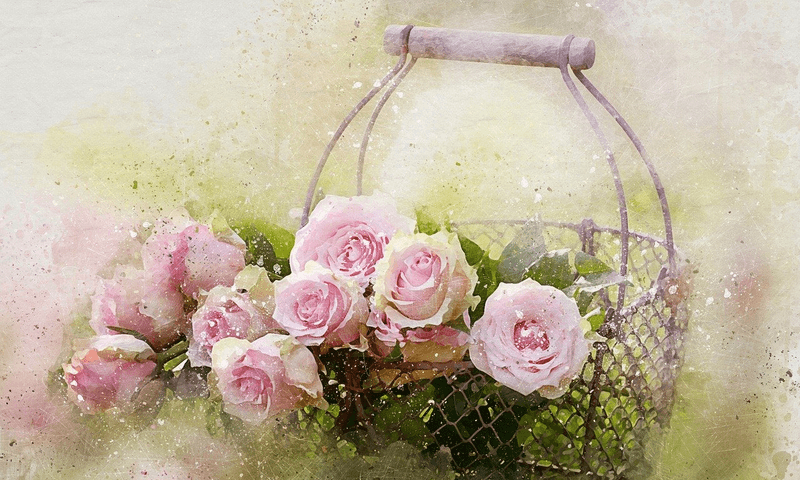 watercolor-roses-and-basket-2144246
