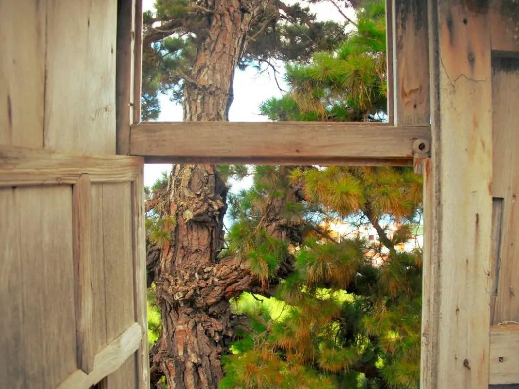 Ausblick - Fenster