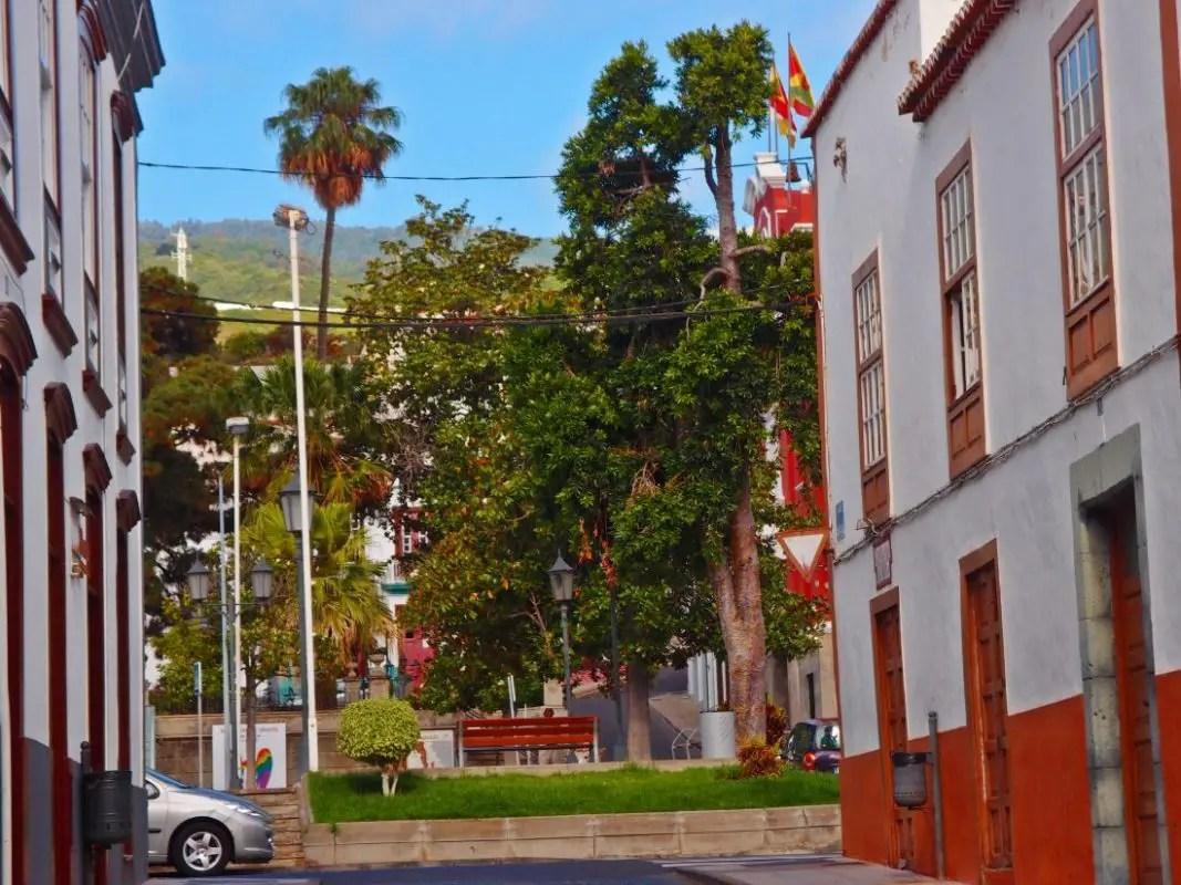 Plaza de Los Sauces