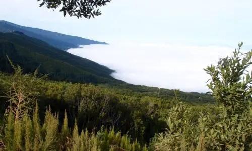 Vom Wolkenmeer bedeckt