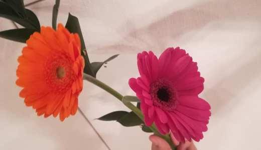 32歳の誕生日にもらったプレゼントの花々