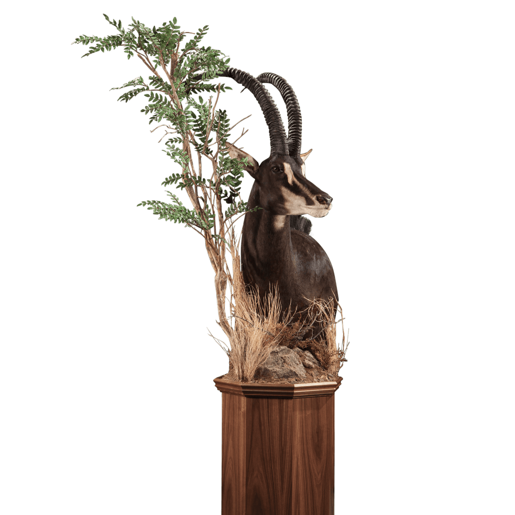 sable with tree pedestal