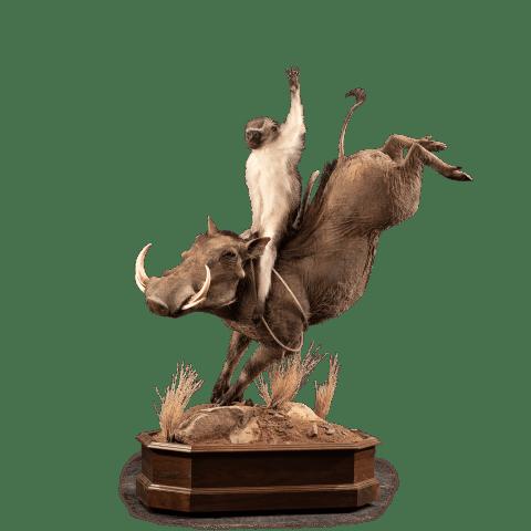 monkey riding a warthog life size pedestal