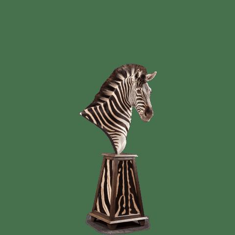 zebra bust pedestal