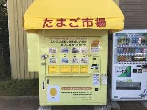 「 すし融 」郊外で人気の鮨店。リーズナブルな価格で本格的な鮨を心ゆくまで !!