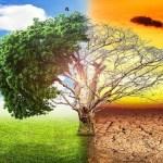 जुनोटीक रोगहरुमा जलवायु परिवर्तनको प्रभाव