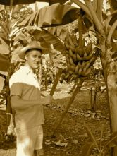 Bruno was introduced to Ecuador doing labor on coastal banana plantations.