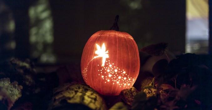 jack-o-lantern-1287381_1920