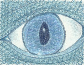 dragon eye with colored pencils 7-24-11