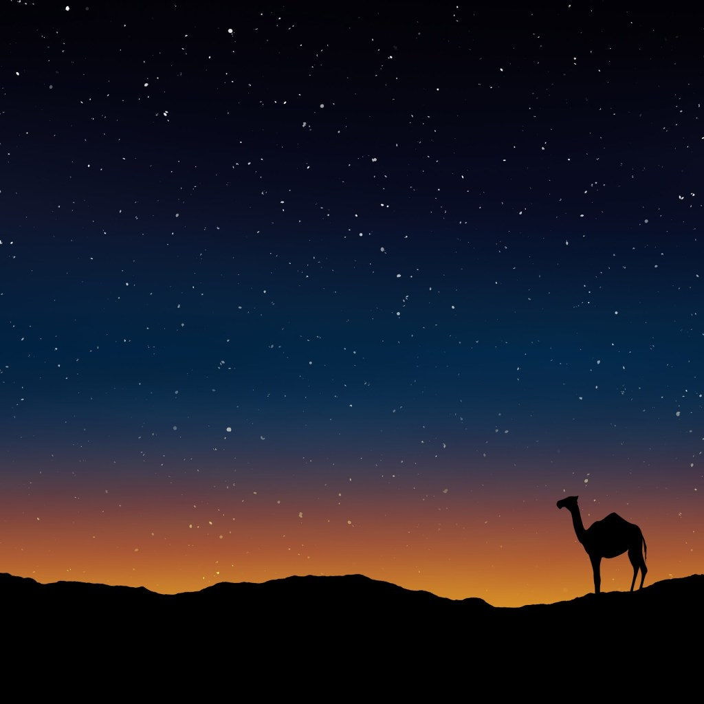 "img=""night in the sandhills"""
