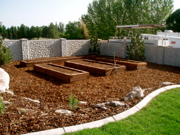 Raised timber vegetable beds and surround