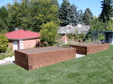 High raised timber vegetable beds