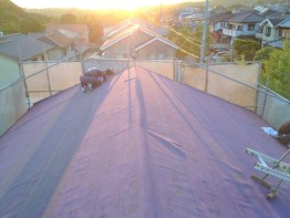 roof1-10