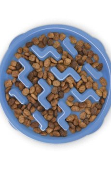 Slow-Feeder-Bowl-for-dogs