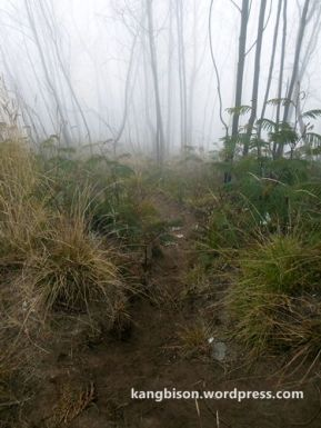 kabut pos 4 pendakian gunung lawu dari cetho