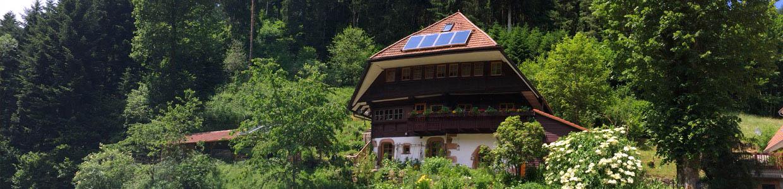 Ein kleines Holzhaus steht an einem Waldhang mit blühendem Garten