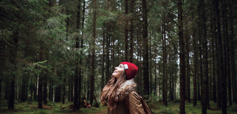 Eine junge Frau mit roter Mütze schaut in einem Fichtenwald in die Baumwipfel